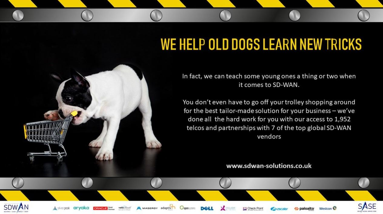 Teach old dogs new tricks, education on SD-WAN and SaSe